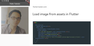 Load image from assets in Flutter